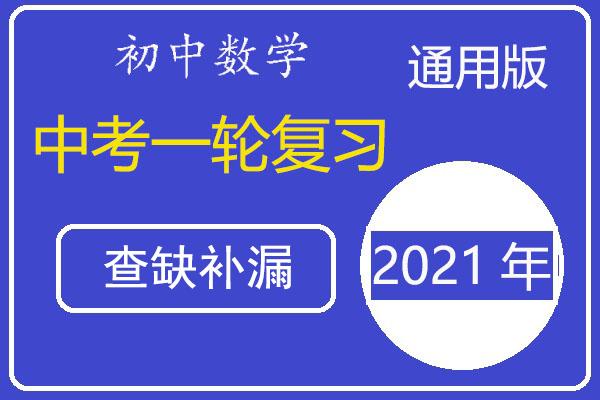 备战2021年中考数学查缺补漏再训练26个微专题(解析版)(共52套打包)
